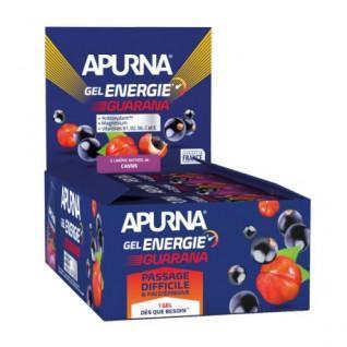Partij van 24 gels Apurna Energy guarana zwarte bessen - 35g